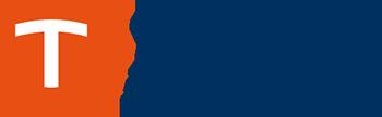 Theo Logo